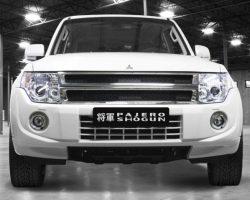 Юбилейный Mitsubishi Pajero Shogun 2014 в России